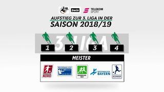 Regionalliga: Die neue Aufstiegsregelung bis 2020