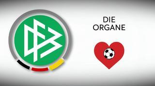 Die Organe der DFB-Sportgerichtsbarkeit