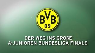 Der Weg ins Finale: Borussia Dortmund