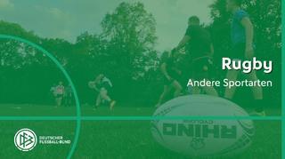 Andere Sportarten: Rugby