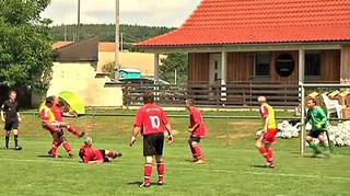 Landesfinale des BFV-Ü40- und Ü50-Cups der Herren