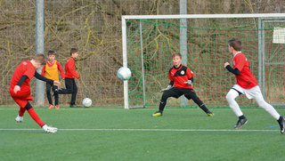 Hallescher FC: Training nach Plan
