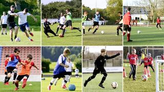 DFB-Training online: Die Basics schulen