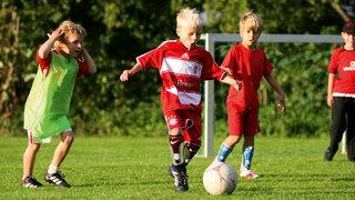 Taktik-Grundlagen für Kinder: Fußball spielen im Hexenwald