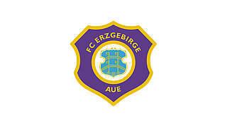 500 Euro Geldstrafe für Erzgebirge Aue