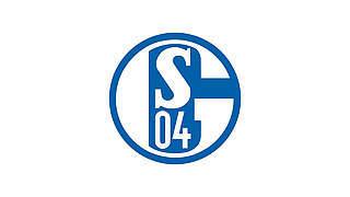 20.000 Euro Geldstrafe für Schalke 04