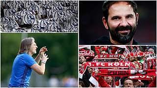 Schalke gegen Köln live auf DFB-TV