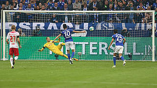 Schalke feiert Heimsieg gegen Leipzig
