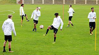 Europameister Dahoud: Zentrale Figur in der neuen U 21