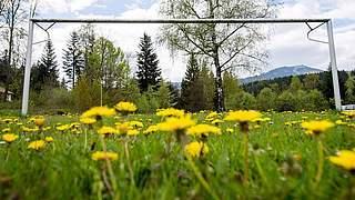 Lehrgänge für Fußball-Platzwarte