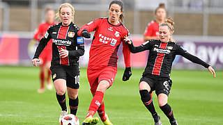Nikolic wechselt von Sand nach Leverkusen