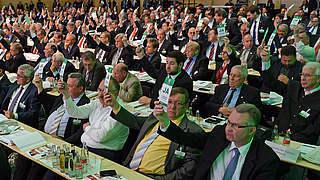Der Fahrplan für den DFB-Bundestag
