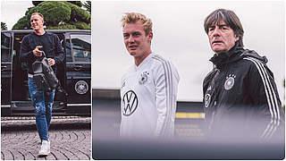 Pressekonferenz mit Löw, Brandt und ter Stegen live auf DFB-TV