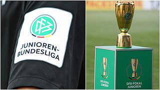Vereine der Junioren-Wettbewerbe votieren für Saisonabbruch